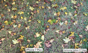 Kameravergleich: iPhone 7 Plus vs. Samsung Galaxy S7 Edge