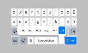 iPhone iPad URL Webadresse Webseite eingeben trick tipp domains