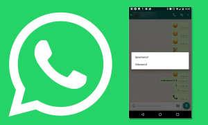 Videotelefonie WhatsApp Skype Facetime