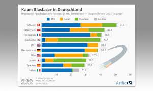 OECD Infografik