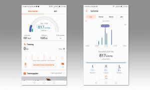 Huawei Gesundheit