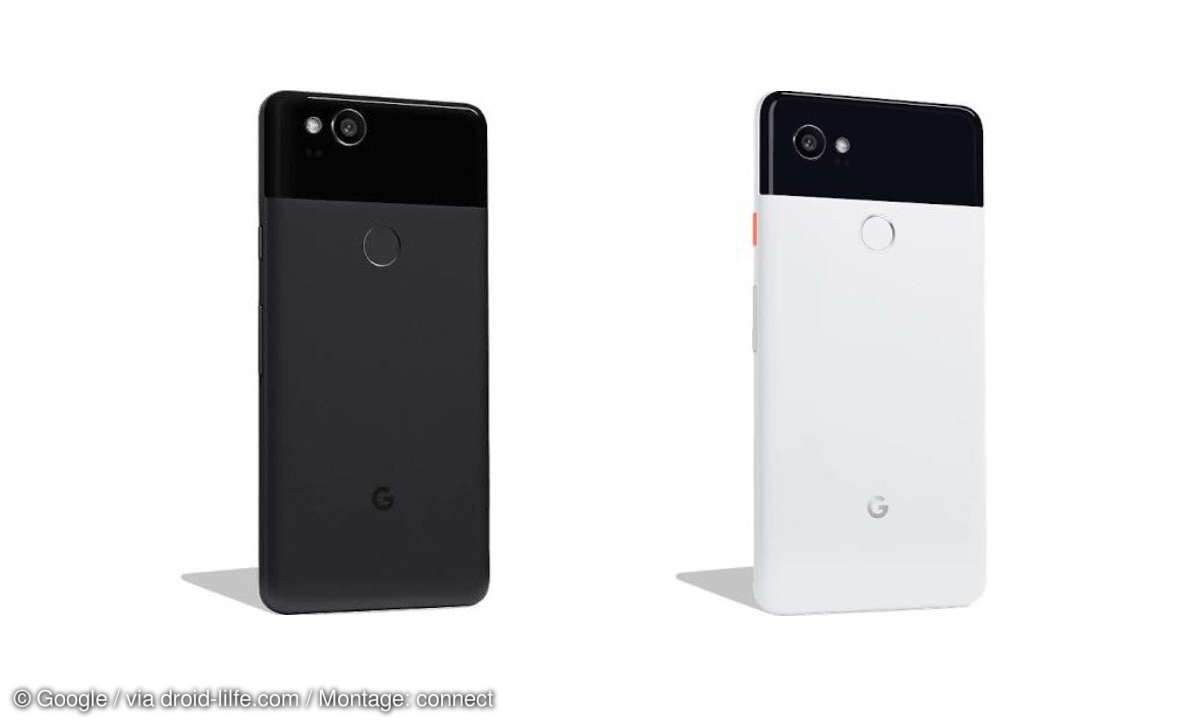 Pixel 2 XL Bilder Leak