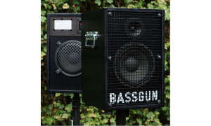 RoomAudio & BASSGUN
