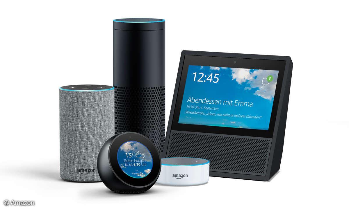 Alexa oder Google Assistant? Echo Familie