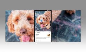 Künstliche Intelligenz - Google Lens