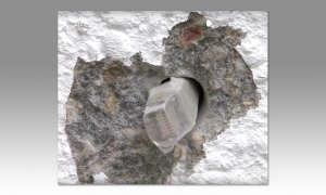 Ethernet-Vernetzung: Mauerdurchbruch