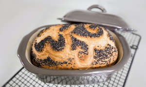Smart GF Foods- Brot
