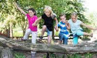 Woody's Baumabenteuer Baumstamm Kinder