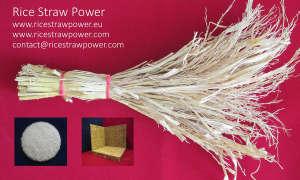 Rice Straw Power Logo