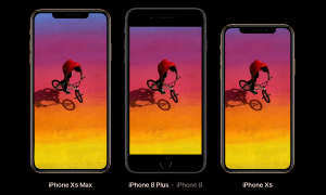iPhone XS Max, iPhone 8 Plus, iPhone XS