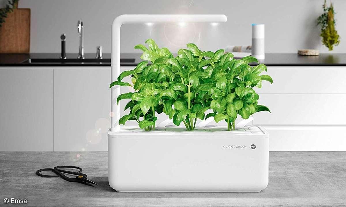Emsa Click&Grow Indoor-Garten