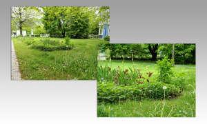 ZTE Axon 10 Pro Kamera Beispielbilder