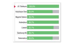 Breitbandfestnetz-Anbieter in Österreich: Kategorie-Bewertung Fotobuchdienste  A1 Telekom