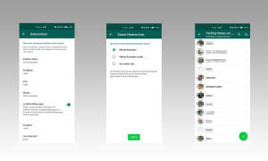 Whatsapp Status ausschließen