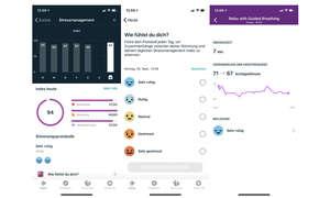 Screens-Fitbit-Stress