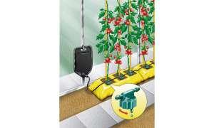 Big-Drippa-Bewässerungssystem