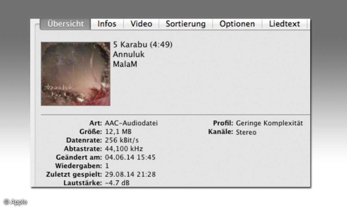 Apple iTunes Track Info Screenshot