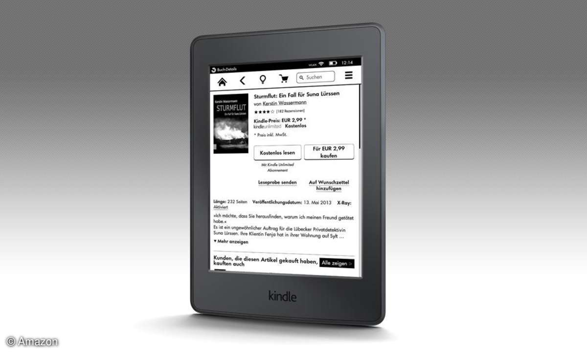 Kindle Paperlight 3G (2015)