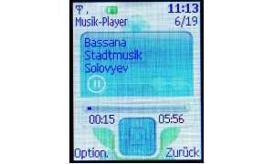 Display des Nokia 3110 Evolve