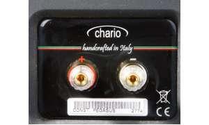Chario Constellation Pegasus