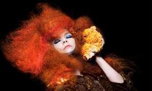 Björk tritt beim Berlin Festival 2013 auf