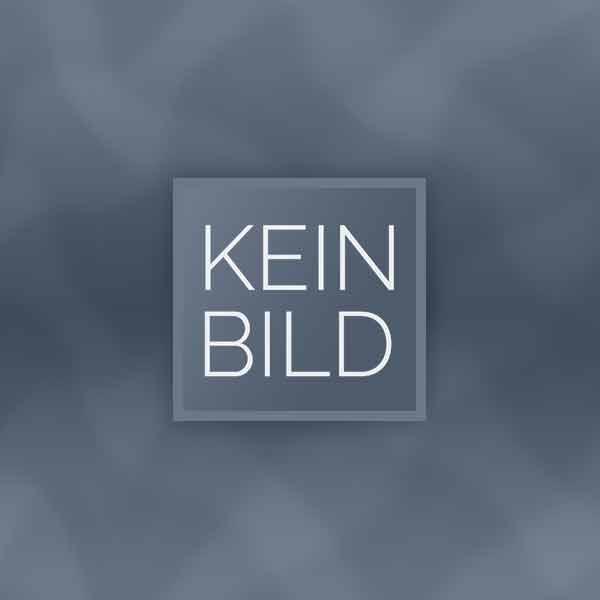 Plattenspieler Brinkmann Bardo + 10.5 + HRS R 1